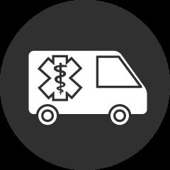 NEMT Icon